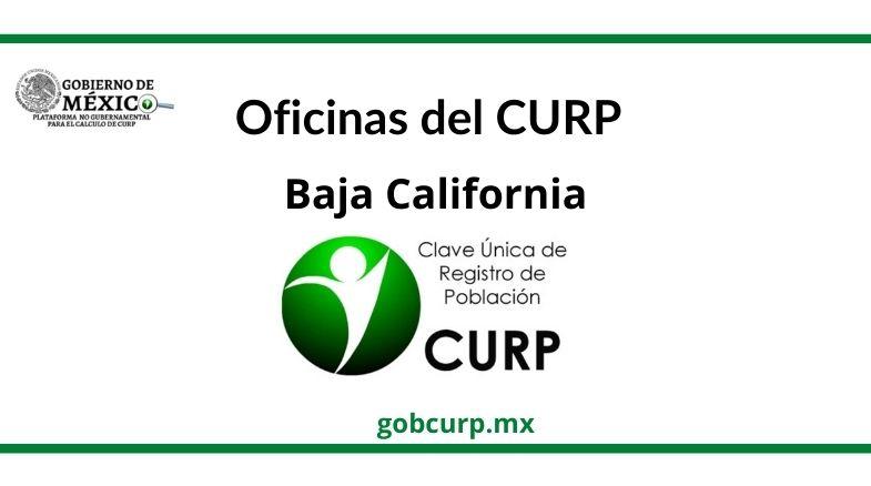 Oficinas para sacar el CURP en baja california